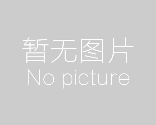 """""""疫""""情别恋,思德诺庆胶辊坚持出展2020 CHINAPLAS"""